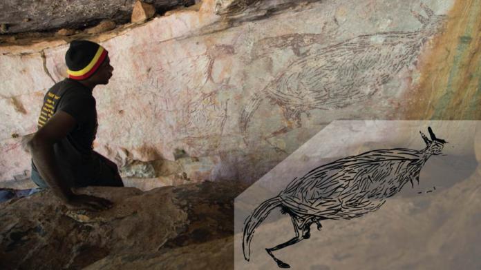 Australia dipinti canguri