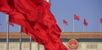Cina NPC