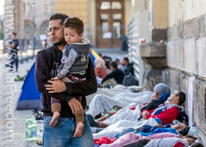 Rifugiati Danimarca Damasco